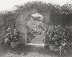 Big Edie köpte Grey Garden tillsammans med sin man Phelan år 1920. När han lämnade henne 1934 hade hon varken den finansiella eller mentala kapaciteten att ta hand om trädgården som då förföll. Foto: Frances Benjamin Johnston
