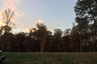 Washington har tillslut omfamnat hösten. Foto: Henrik Pehrsson